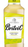 Britvic Ginger Ale NRB 200ml - Case of 24