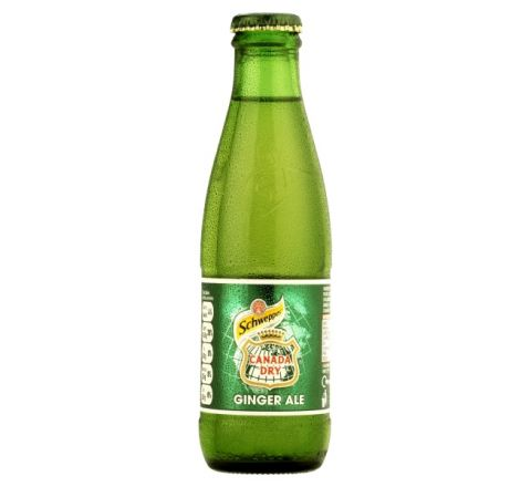 Schweppes Canada Dry Ginger Ale NRB 125ml - Case of 24