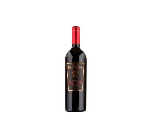 Viña Falernia Carmenere/Syrah Reserva Wine 75cl - Case of 6