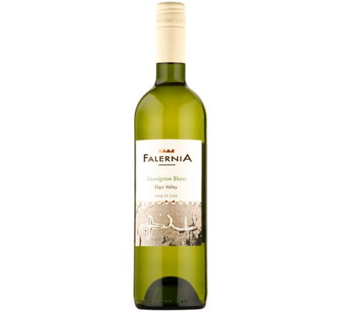 Viña Falernia Sauvignon Blanc 2016 Wine 75cl - Case of 6
